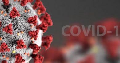 Koronavirus COVID-19 v ČR